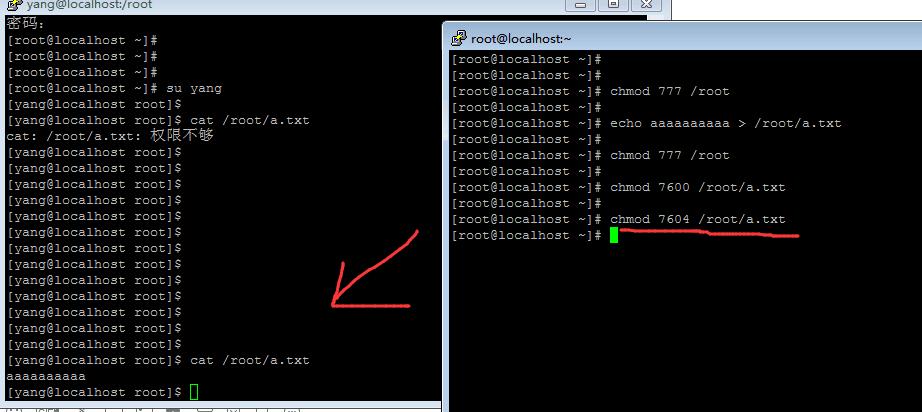 Linux 特殊权限